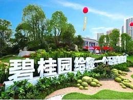碧桂园集团自动化项目